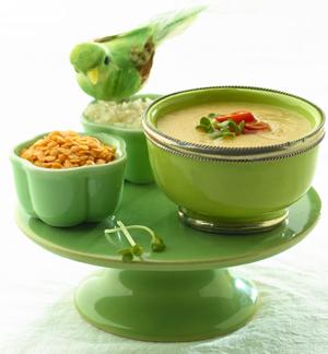 Asch-e-sadeh – Persische Reis-Kräutersuppe