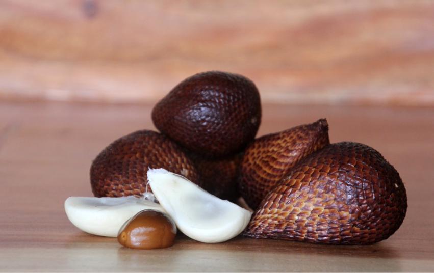 Schlangefrucht Salacca